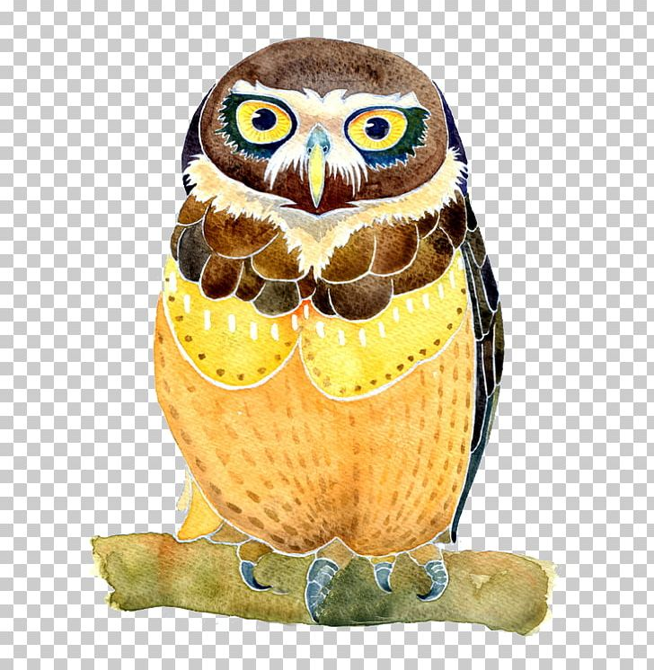 Owl Watercolor Painting Illustration PNG, Clipart, Animals, Art, Beak, Bird, Bird Of Prey Free PNG Download