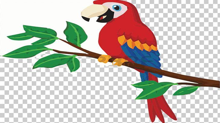 Parrot PNG, Clipart, Animals, Art, Beak, Bird, Branch Free PNG Download