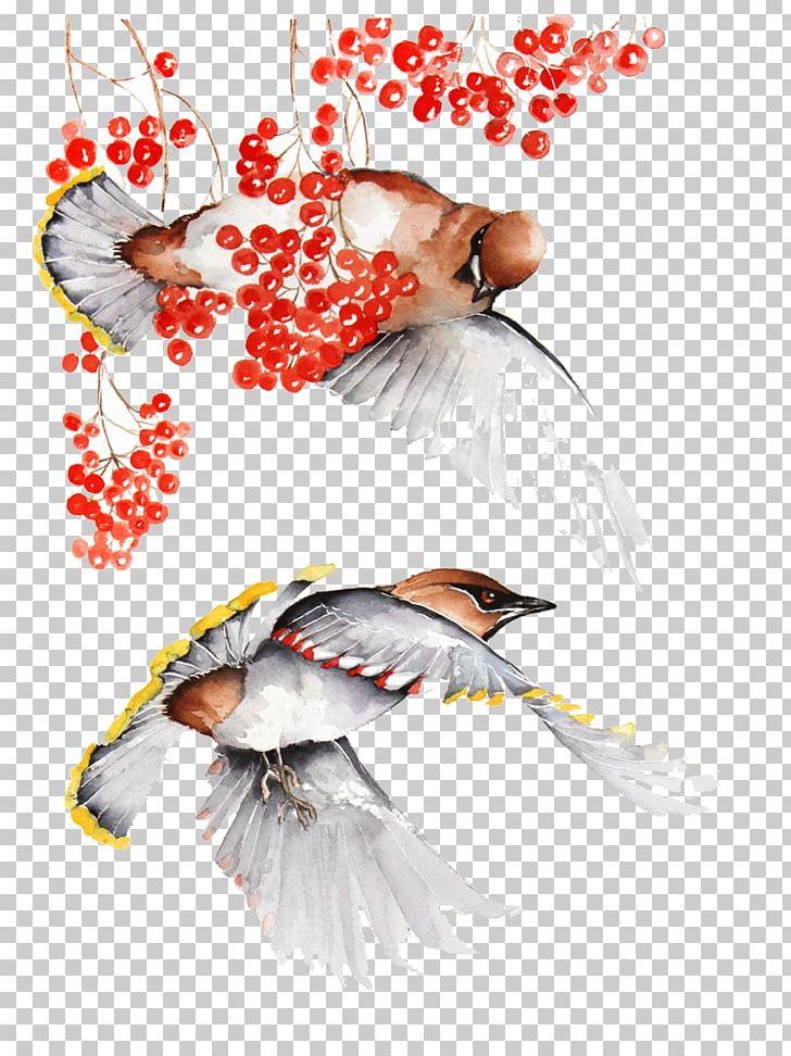 Bird Watercolor Painting Illustration PNG, Clipart, Art, Beak, Bird, Bird Cage, Birds Free PNG Download