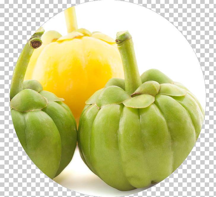 Garcinia Cambogia Dietary Supplement Hydroxycitric Acid Health