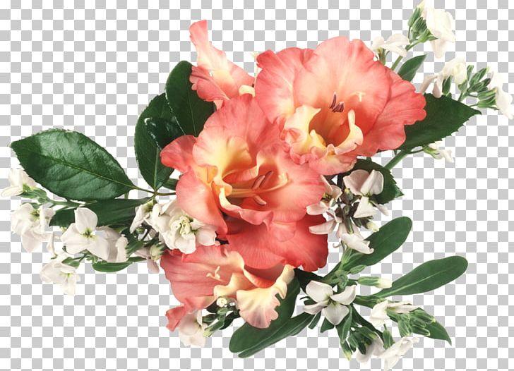 Flower Bouquet Desktop Gladiolus Cut Flowers PNG, Clipart, Computer, Cut Flowers, Desktop Metaphor, Desktop Wallpaper, Display Resolution Free PNG Download