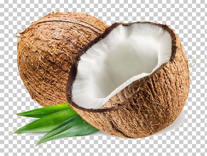 Coconut Water Coconut Milk Coconut Oil PNG, Clipart, Coconut, Coconut Milk, Coconut Oil, Coconut Water, Cooking Free PNG Download