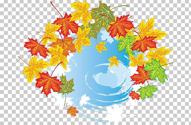 Maple Leaf Autumn Leaves Graphics PNG, Clipart, Abscission, Autumn, Autumn Leaves, Branch, Drawing Free PNG Download