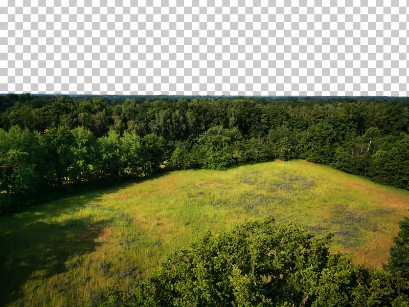 Shrubland Vegetation Temperate Broadleaf And Mixed Forests Biome Pasture PNG, Clipart, Biome, Broadleaved Tree, Forest, Hill Station, Land Lot Free PNG Download