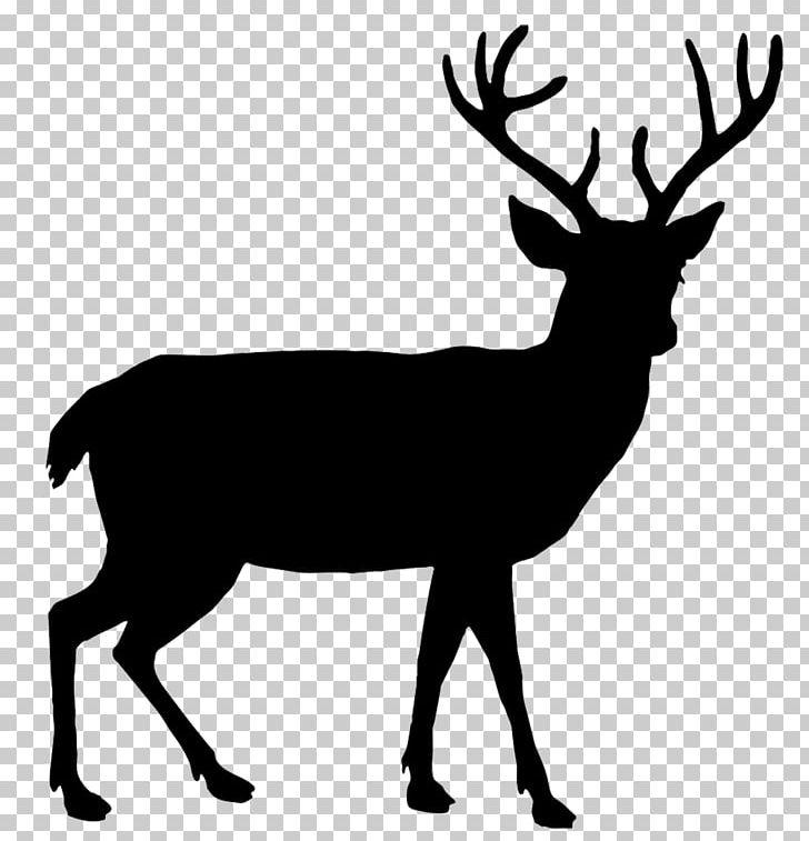 White-tailed Deer Reindeer Red Deer Elk PNG, Clipart, Antler, Black And White, Deer, Drawing, Elk Free PNG Download