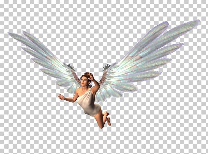 Fairy Desktop PNG, Clipart, Angel, Desktop Wallpaper, Fairy, Fantasy, Feather Free PNG Download