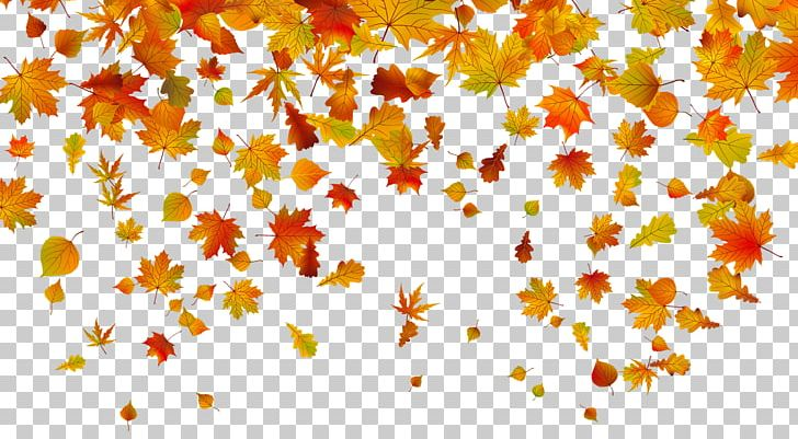 Owl Autumn Leaf Color Desktop PNG, Clipart, Animation, Autumn, Autumn Leaf Color, Autumn Leaves, Blog Free PNG Download