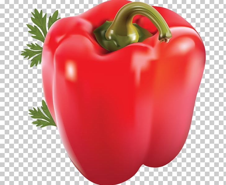 Bell Pepper Chili Pepper Chili Con Carne Portable Network Graphics Black Pepper PNG, Clipart, Bell Pepper, Cayenne Pepper, Chili Pepper, Food, Fruit Free PNG Download
