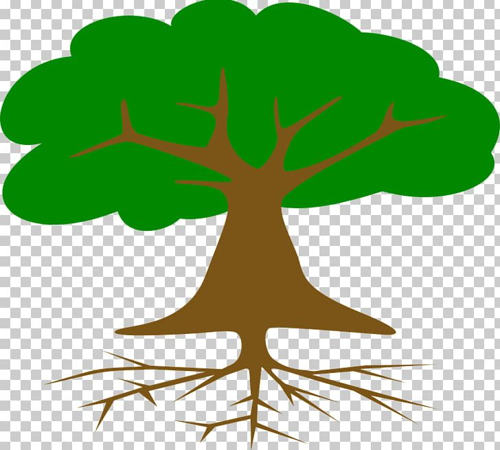 Tree Root PNG, Clipart, Agac, Artwork, Branch, Computer Icons, Document Free PNG Download