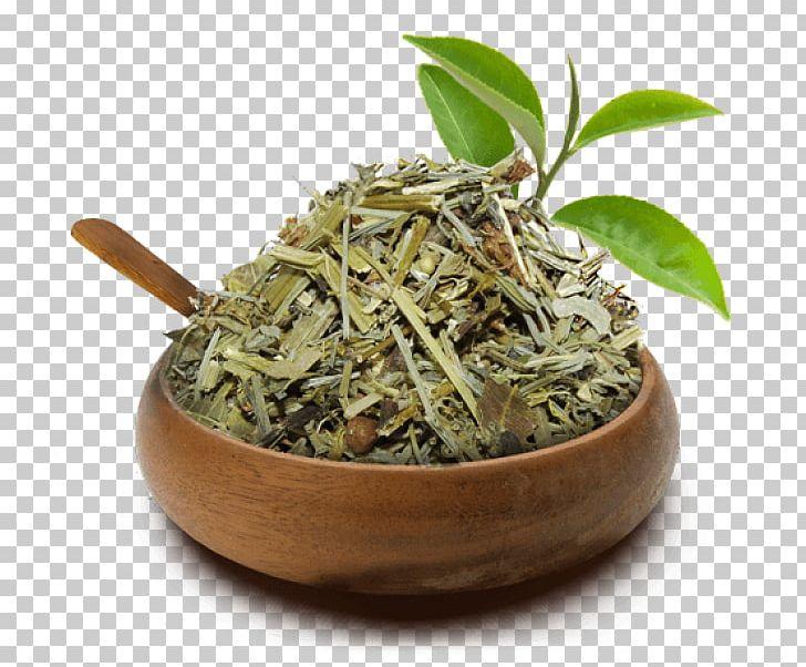 Hibiscus Tea Hōjicha Green Tea Equisetum PNG, Clipart, Bai Mudan, Bancha, Biluochun, Cha Cha, Dianhong Free PNG Download