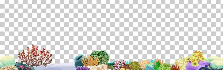 Coral Reef Desktop PNG, Clipart, Clip Art, Computer, Computer Wallpaper, Coral, Coral Reef Free PNG Download