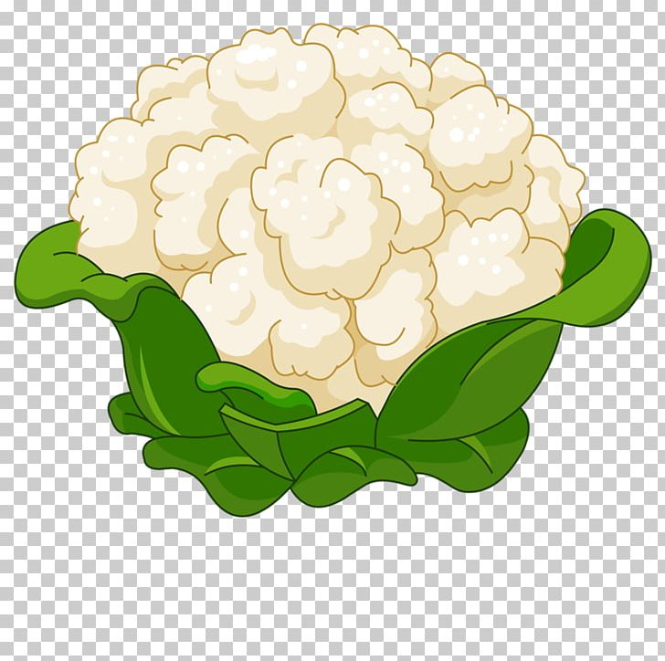 Cauliflower Cartoon PNG, Clipart, Cabbage, Can Stock Photo, Color