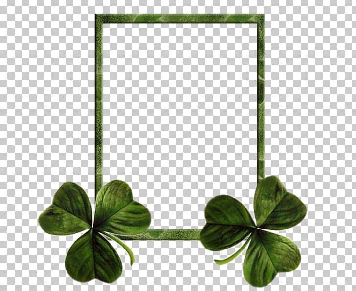 Ireland Saint Patricks Day Shamrock Clover Holiday PNG, Clipart, Border Frame, Christmas Frame, Clover, Float, Floral Frame Free PNG Download