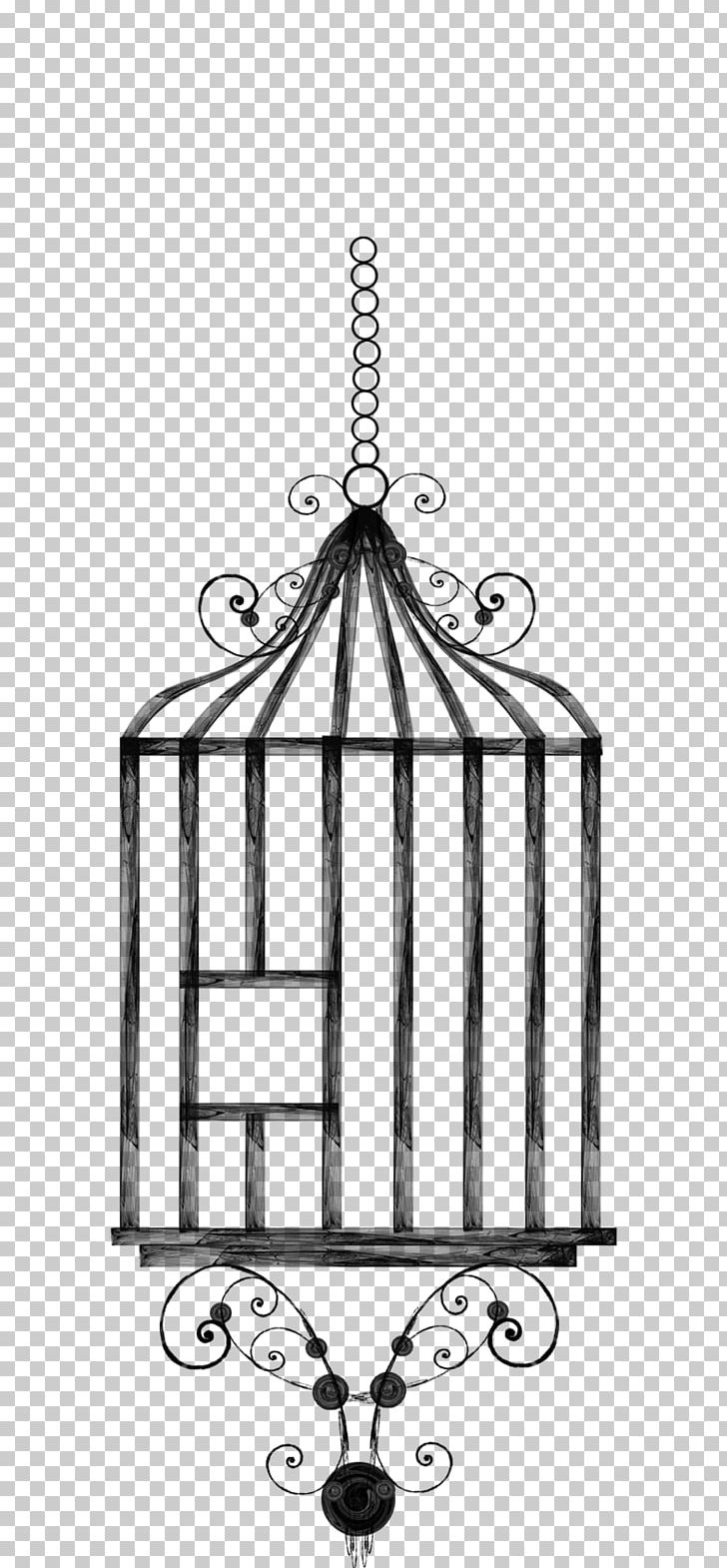 Birdcage Drawing Lovebird PNG, Clipart, Area, Art, Bird, Birdcage