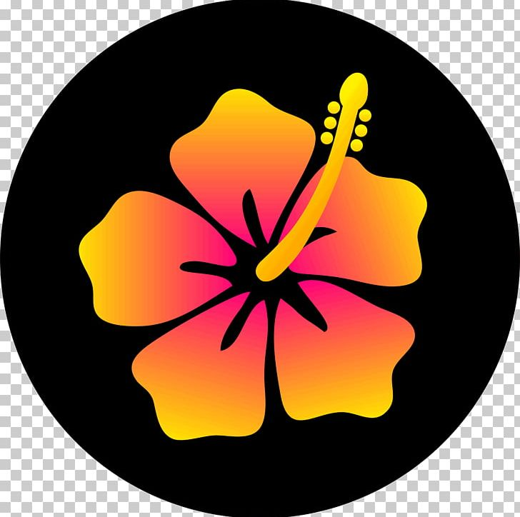 Hawaiian Hibiscus Drawing Flower Png Clipart Art Color