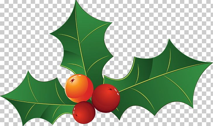 Christmas Leaves.Christmas Decoration Christmas Tree Leaf Png Clipart
