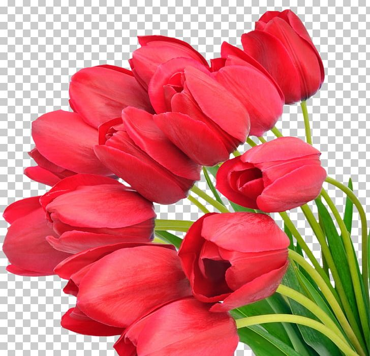 Flower Bouquet Mother's Day Tulip Desktop PNG, Clipart, Arumlily, Cut Flowers, Desktop Wallpaper, Display Resolution, Fathers Day Free PNG Download
