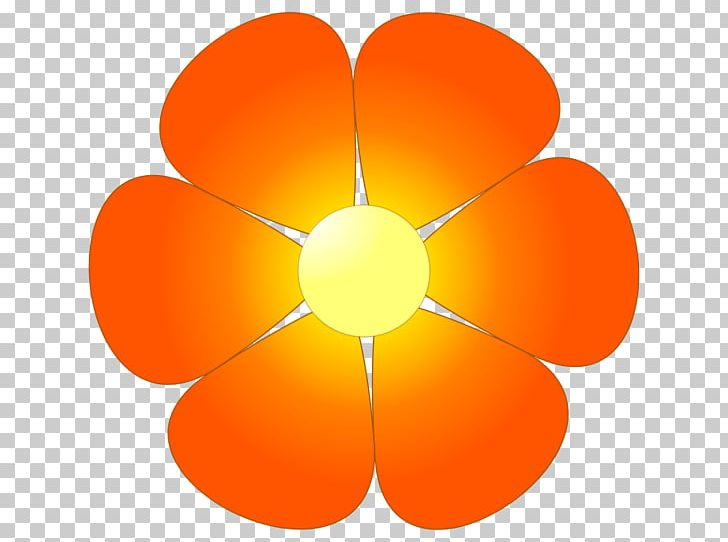 Orange Flower PNG, Clipart, Circle, Clip Art, Color, Computer Wallpaper, Drawing Free PNG Download