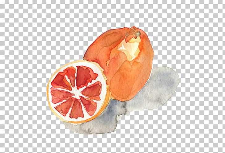 Watercolor Painting Printmaking Art PNG, Clipart, Citrus, Drawn, Food, Fruit, Fruit Nut Free PNG Download