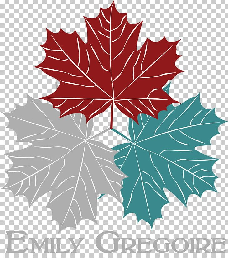 Toronto Maple Leafs Paper Canada Day Png Clipart Canada Canada Day Flowering Plant Leaf Line Free
