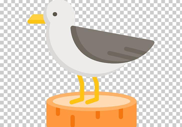 Computer Icons PNG, Clipart, Animals, Beak, Bird, Clip Art, Computer Font Free PNG Download