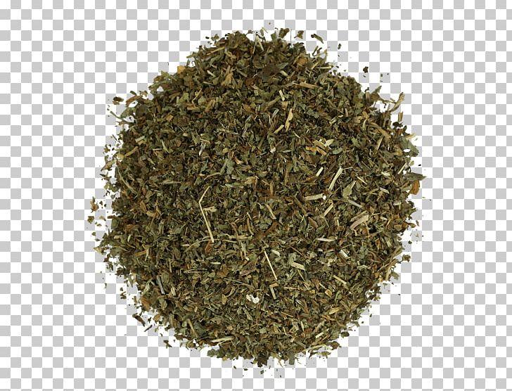 Nilgiri Tea Hōjicha Herbal Tea PNG, Clipart, Bancha, Biluochun, Caffeine, Calea Ternifolia, Ceylon Tea Free PNG Download