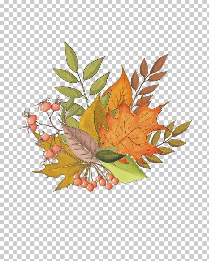 Maple Leaf Autumn Drawing PNG, Clipart, Autumn, Autumn Leaf Color, Branch, Bunch, Butterfly Free PNG Download