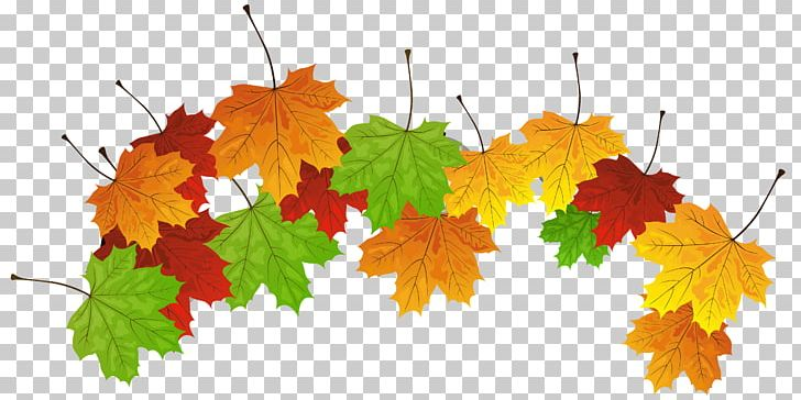 Autumn Leaf Color PNG, Clipart, Autumn, Autumn Leaf Color, Clipart, Desktop Wallpaper, Download Free PNG Download