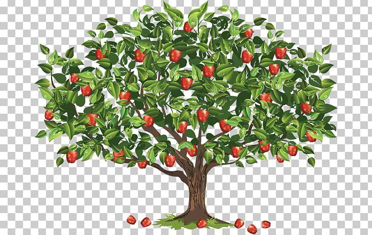 """Arbor Day Tree Planting Reedley """"College To Parkway"""" Run/Walk Earth Day PNG, Clipart, Apple, Apple Tree, Aquifoliaceae, Arbor Day, Berry Free PNG Download"""