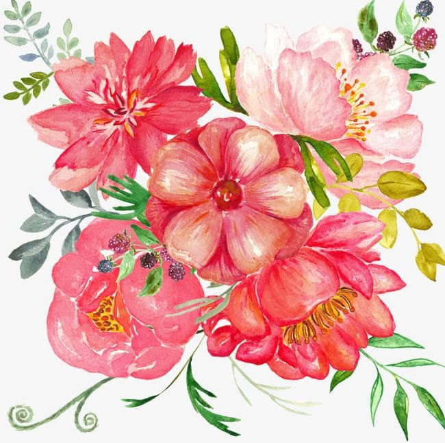 Hand-painted Flowers PNG, Clipart, Beautiful, Beautiful Flowers, Chinese, Chinese Rose, Design Free PNG Download