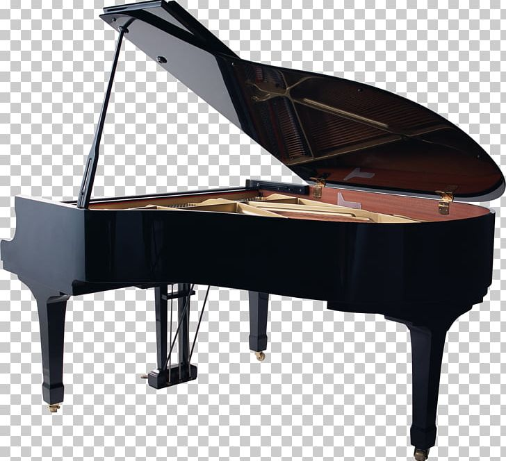 Piano Musical Instruments Art PNG, Clipart, Art, Bartolomeo Cristofori, Dance, Digital Piano, Dynamics Free PNG Download