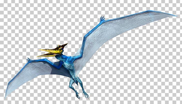 Pteranodon Microceratus Mosasaurus Velociraptor Dimorphodon PNG, Clipart, Big, Cretaceous, Dimorphodon, Dinosaur, Dragon Free PNG Download