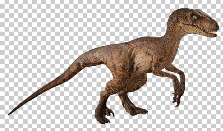 Velociraptor Robert Muldoon Jurassic Park Film Dinosaur PNG, Clipart, Animal Figure, Art Cartoon, Character, Dinosaur, Film Free PNG Download
