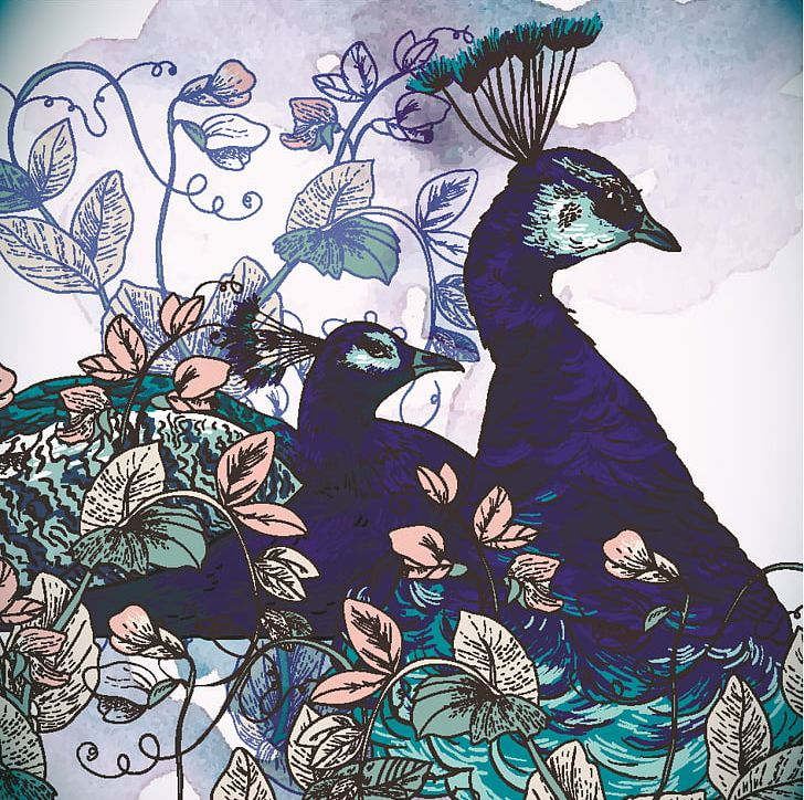 Asiatic Peafowl Watercolor Painting PNG, Clipart, Animals, Art, Asiatic, Asiatic Peafowl, Drawing Free PNG Download