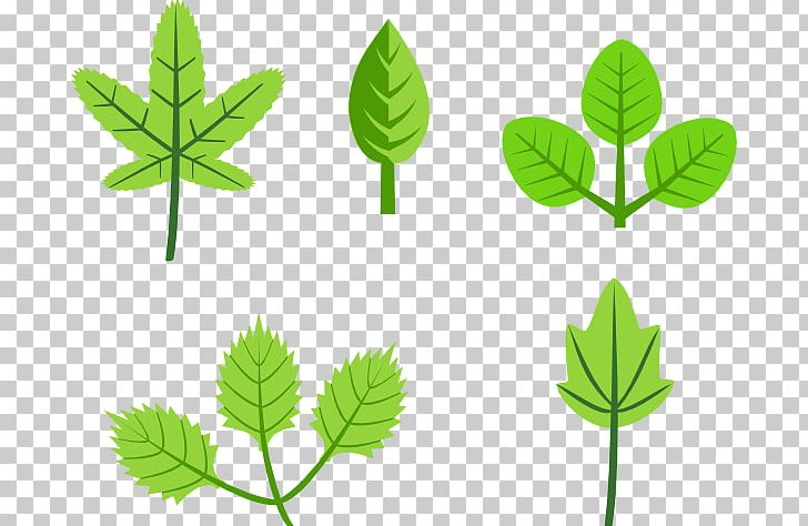 Autumn Leaf Color PNG, Clipart, Autumn, Autumn Leaf Color, Branch, Cartoon Trees With Branches, Download Free PNG Download