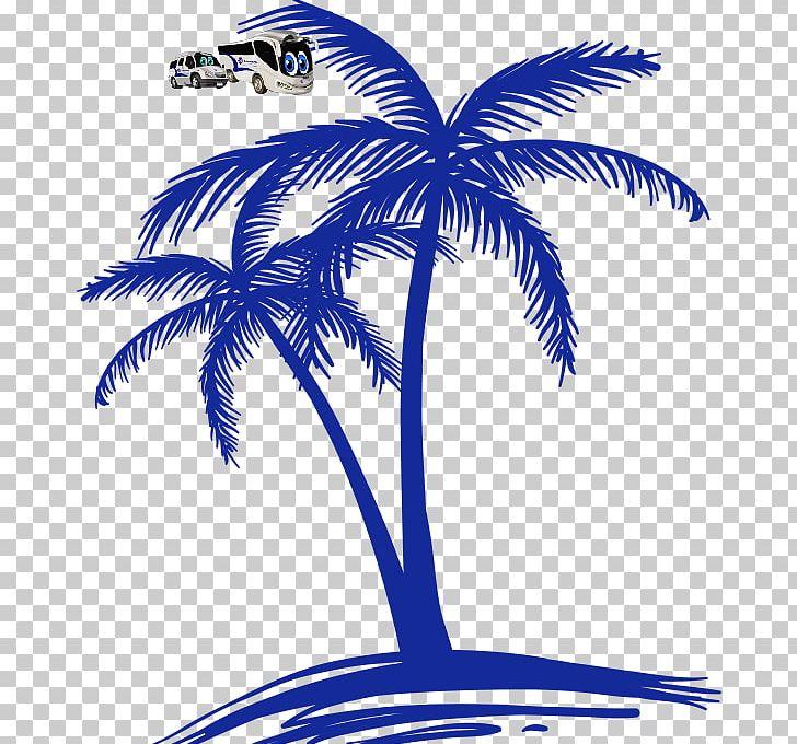 Ola Zanzibar Car Rental Pemba Island Renting Png Clipart Arecales