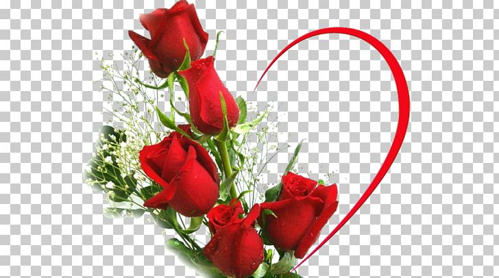 Desktop Rose Love Flower Stock Photography PNG, Clipart, Coeur, Cut Flowers, Declaration Of Love, Desktop Wallpaper, Flower Free PNG Download