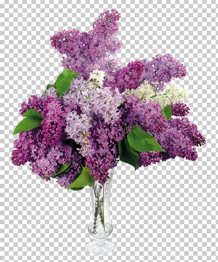 Common Lilac Flower Bouquet Desktop PNG, Clipart, Branch, Common Lilac, Cut Flowers, Desktop Wallpaper, Display Resolution Free PNG Download