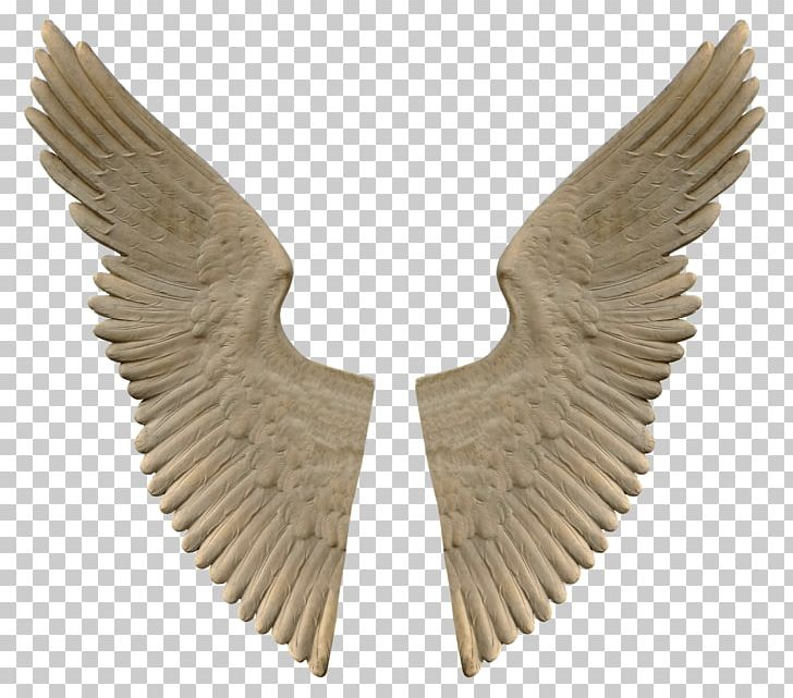 Stone Angel Wings PNG, Clipart, Comics And Fantasy, Wings Free PNG Download