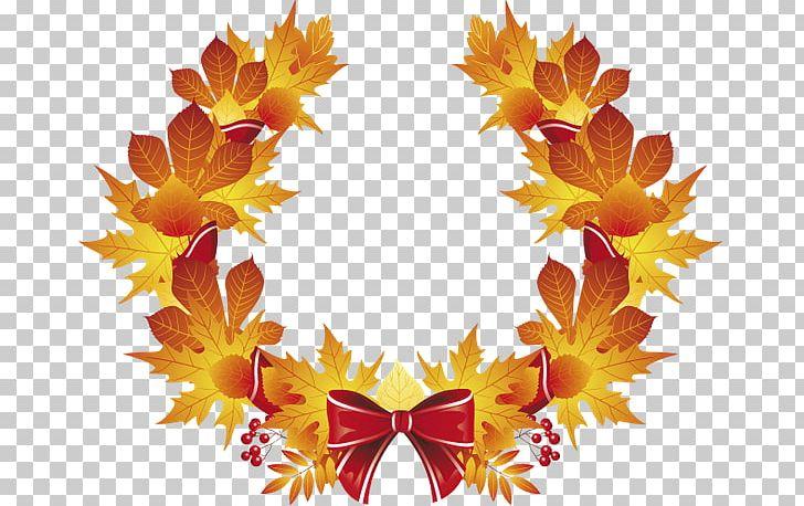 Maple Leaf Autumn Leaf Color PNG, Clipart, Autumn, Autumn Leaf Color, Leaf, Maple, Maple Leaf Free PNG Download