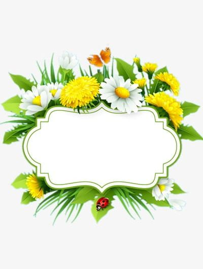 Flowers Title Box PNG, Clipart, Border, Box Clipart, Flowers, Flowers Border, Flowers Clipart Free PNG Download