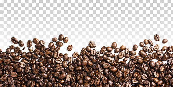 Coffee Bean Iced Coffee PNG, Clipart, Bean, Coffee, Coffee Beans, Coffee Preparation, Coffee Roasting Free PNG Download