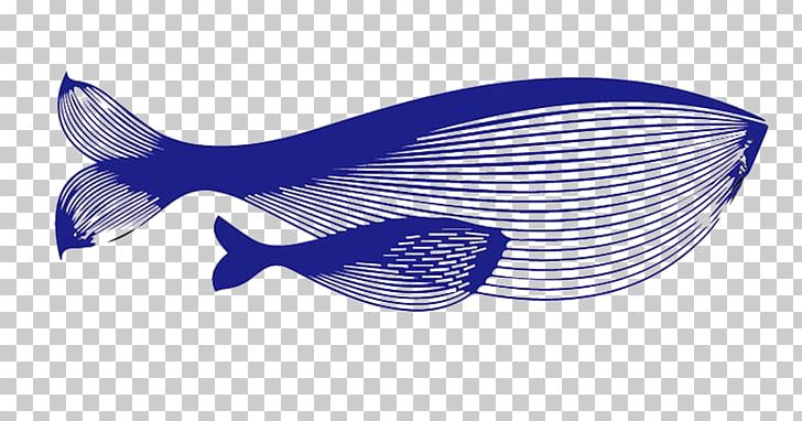 Blue Whale PNG, Clipart, Adobe Illustrator, Animals, Blue, Blue Abstract, Blue Background Free PNG Download