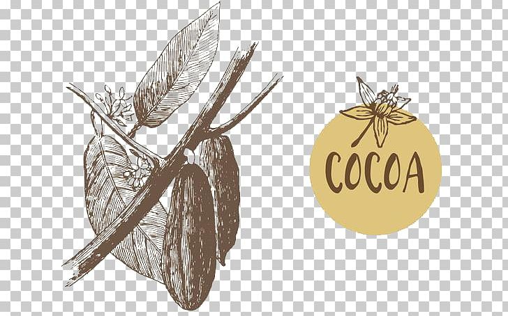 Theobroma Cacao Cocoa Bean Euclidean Illustration PNG, Clipart, Bean, Beans, Brand, Cocoa Bean, Coffee Free PNG Download