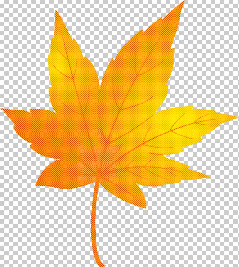 Maple Leaf Autumn Leaf Yellow Leaf PNG, Clipart, Autumn, Autumn Leaf, Black Maple, Deciduous, Flower Free PNG Download
