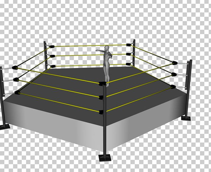 Boxing Rings Wrestling Ring 2300 Arena Professional