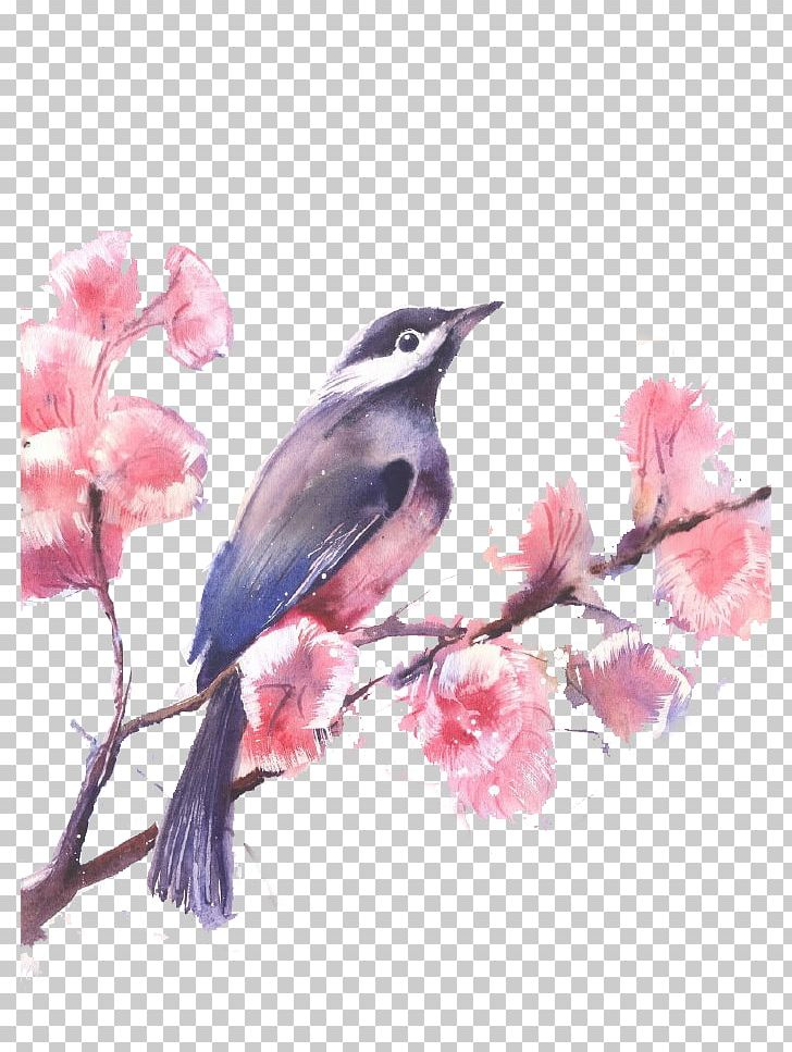 Watercolor Painted Birds And Flowers PNG, Clipart, Art, Beak, Bird, Birds, Blossom Free PNG Download