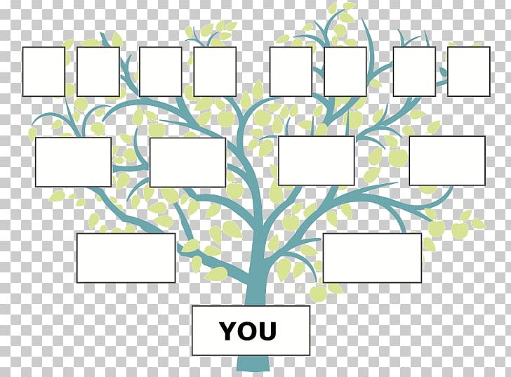 Family Tree Genealogy Ancestor FamilySearch PNG, Clipart