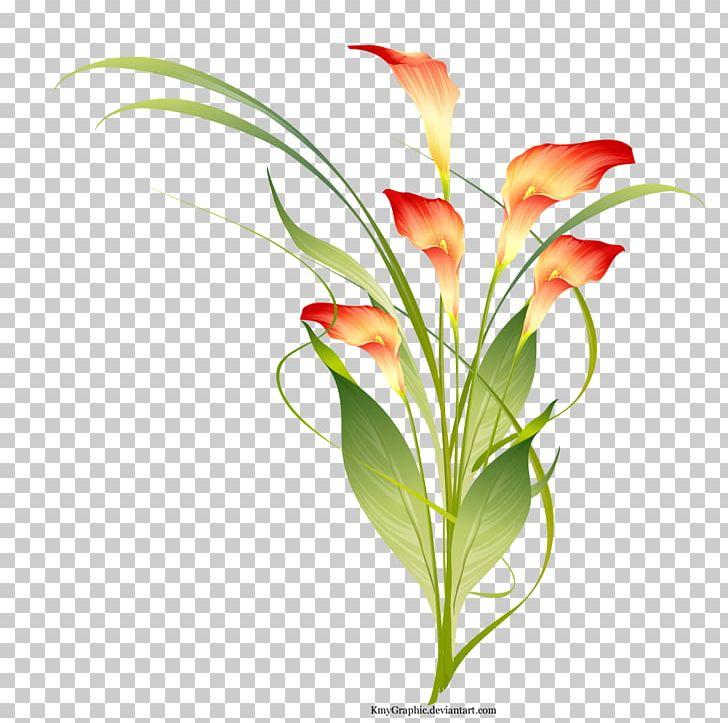 Flower PNG, Clipart, Alstroemeriaceae, Aquarium Decor, Artificial Flower, Branch, Desktop Wallpaper Free PNG Download
