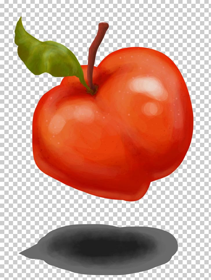 Bell Pepper Food Chili Pepper Drawing Art PNG, Clipart, Acerola, Apple, Art, Bell Pepper, Chili Pepper Free PNG Download